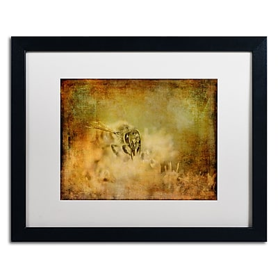 Trademark Fine Art Lois Bryan 'Send the Bees Love' 16 x 20 (LBR0282-B1620MF)