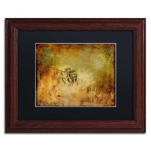 Trademark Fine Art Lois Bryan 'Send the Bees Love'  11 x 14 (886511641228)