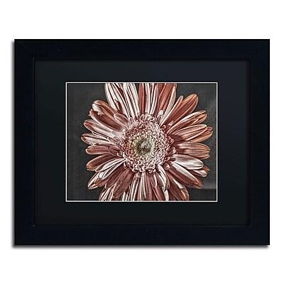 Trademark Fine Art Lois Bryan 'Silvery Pink' 11 x 14 (886511641242)