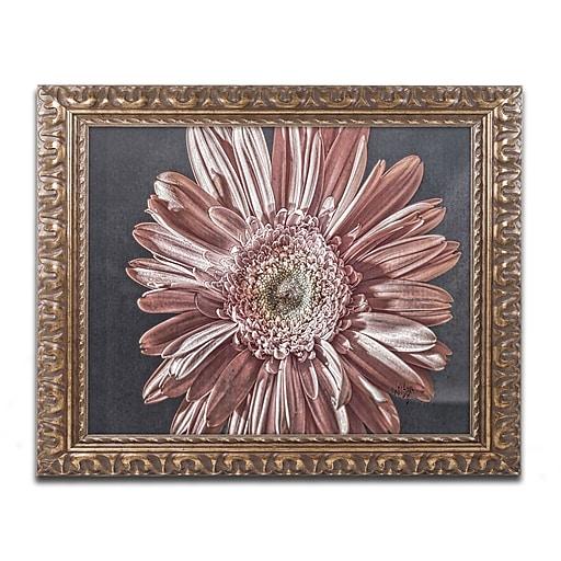 "Trademark Global Lois Bryan 'Silvery Pink' Ornate Framed Art, 16"" x 20"" (LBR0283-G1620F)"