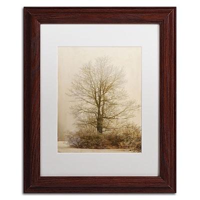 Trademark Fine Art Lois Bryan 'Tan Tones in the Fog' 11 x 14 (LBR0286-W1114MF)