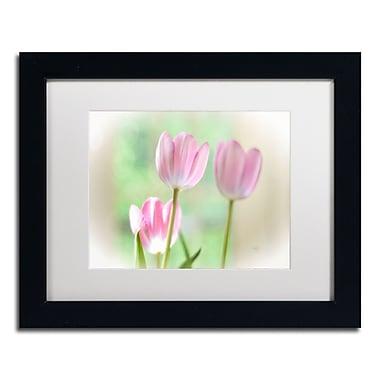 Trademark Fine Art Lois Bryan 'Three Pink Tulips' 11 x 14 (LBR0291-B1114MF)