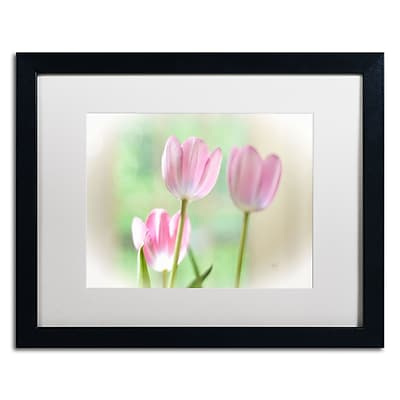 Trademark Fine Art Lois Bryan 'Three Pink Tulips' 16 x 20 (LBR0291-B1620MF)