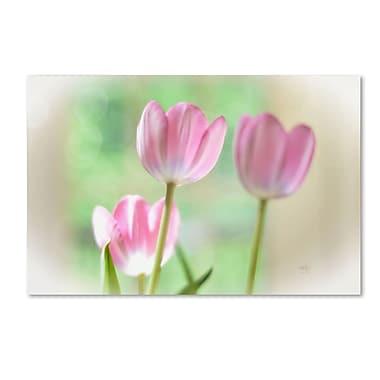 Trademark Fine Art Lois Bryan 'Three Pink Tulips' 22 x 32 (LBR0291-C2232GG)