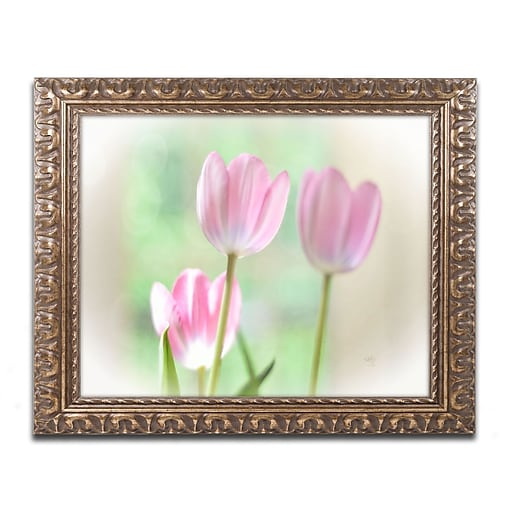 """Trademark Global Lois Bryan 'Three Pink Tulips' Ornate Framed Art 16""""L x 20""""W (LBR0291-G1620F)"""