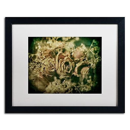 Trademark Fine Art Lois Bryan 'True Love Never Dies'  16 x 20 (LBR0292-B1620MF)