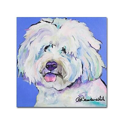 Trademark Fine Art Pat Saunders-White 'Champ' 14 x 14 (PS118-C1414GG)