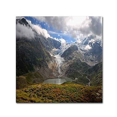 Trademark Fine Art Philippe Sainte-Laudy 'River of Ice' 14 x 14 (PSL0362-C1414GG)