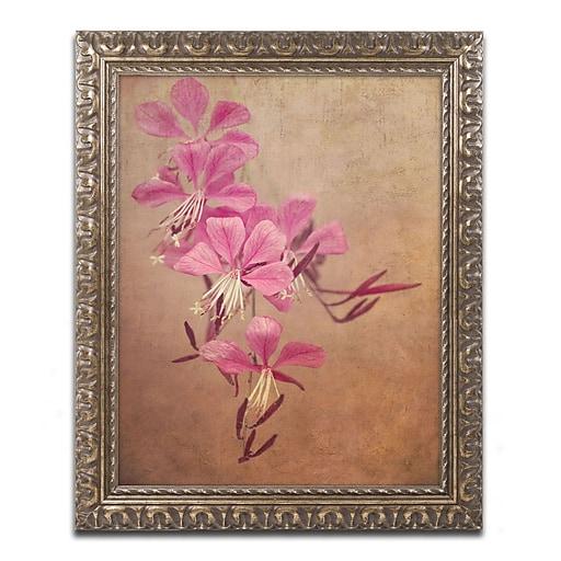 "Trademark Global Philippe Sainte-Laudy 'Heavy Love' Ornate Framed Art 16"" x 20"" (PSL0387-G1620F)"