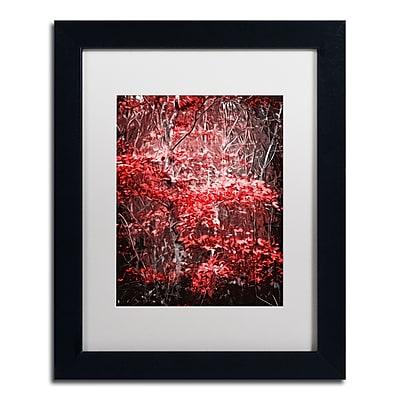 Trademark Fine Art Philippe Sainte-Laudy 'Hope Leaves' 11 x 14 (PSL0388-B1114MF)