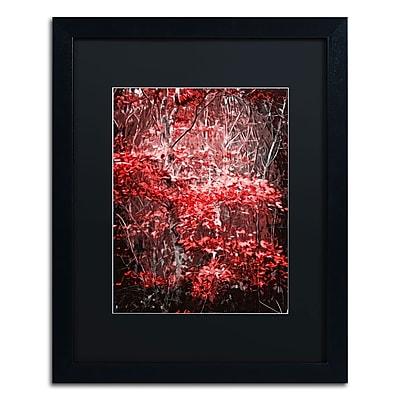 Trademark Fine Art Philippe Sainte-Laudy 'Hope Leaves' 16 x 20 (886511661851)