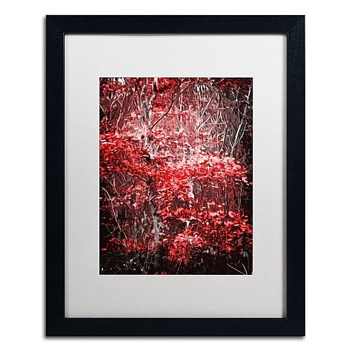 Trademark Fine Art Philippe Sainte-Laudy 'Hope Leaves'  16 x 20 (PSL0388-B1620MF)