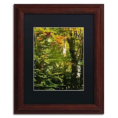 Trademark Fine Art Philippe Sainte-Laudy 'Last Season Green' 11 x 14 (886511661974)