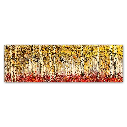 Trademark Fine Art Roderick Stevens 'Fall PanorAspens'  16 x 47 (RS1001-C1647GG)