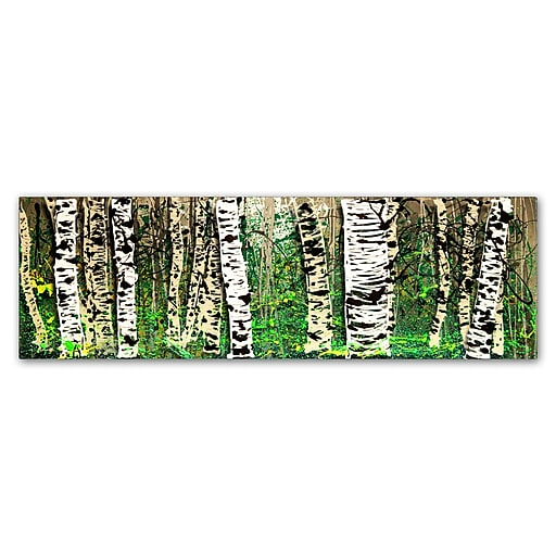 Trademark Fine Art Roderick Stevens 'PanorAspens 4'  10 x 32 (RS1009-C1032GG)