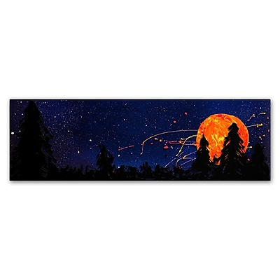 Trademark Fine Art Roderick Stevens 'Washington Moonrise' 6 x 19 (RS1015-C619GG)