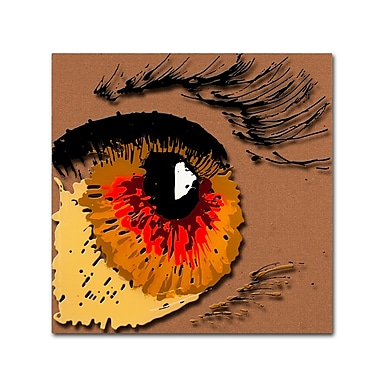 Trademark Fine Art Roderick Stevens 'Eye 1' 35 x 35 (RS1000-C3535GG)
