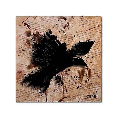 Trademark Fine Art Roderick Stevens 'The Raven 1' 24 x 24 (RS1011-C2424GG)