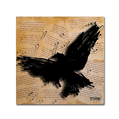 Trademark Fine Art Roderick Stevens 'The Raven 2' 14 x 14 (RS1012-C1414GG)