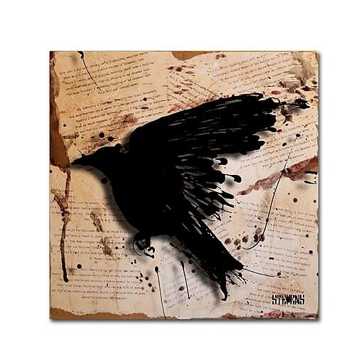 Trademark Fine Art Roderick Stevens 'The Raven 3'  24 x 24 (RS1013-C2424GG)