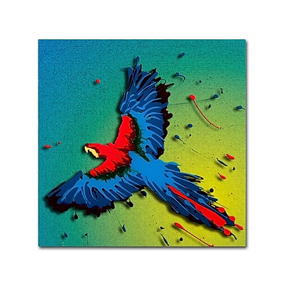 Trademark Fine Art Roderick Stevens 'Tropical Bird 1' 14 x 14 (RS1014-C1414GG)