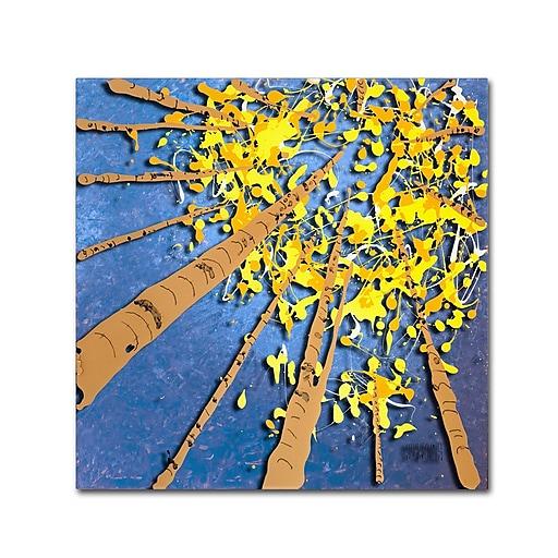 Trademark Fine Art Roderick Stevens 'Aspen Sky'  18 x 18 (RS975-C1818GG)