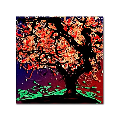 Trademark Fine Art Roderick Stevens 'Fall Red Tree' 14 x 14 (RS981-C1414GG)