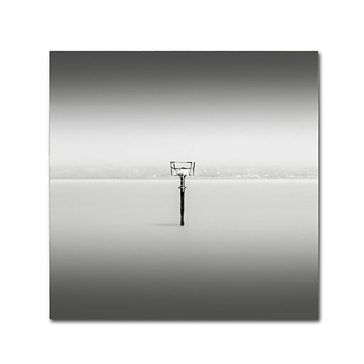Trademark Fine Art Dave MacVicar 'Isolation'  14 x 14 (ALI0836-C1414GG)