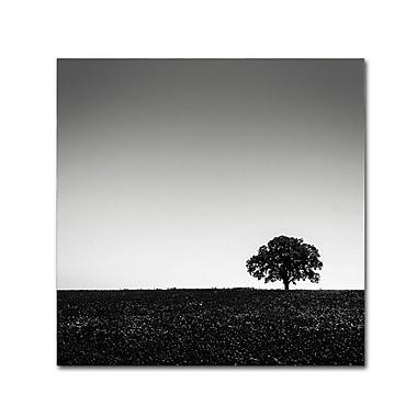 Trademark Fine Art Dave MacVicar 'One Tree Hill' 35 x 35 (ALI0843-C3535GG)