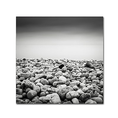 Trademark Fine Art Dave MacVicar 'Pebble Beach' 14 x 14 (ALI0844-C1414GG)