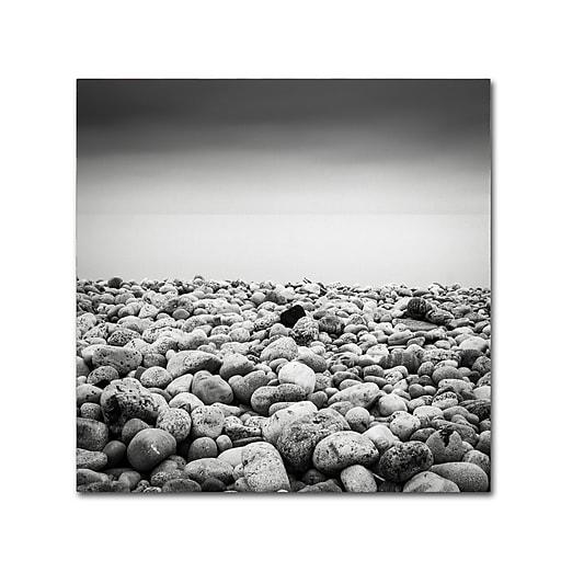 Trademark Fine Art Dave MacVicar 'Pebble Beach'  35 x 35 (ALI0844-C3535GG)