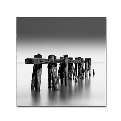 Trademark Fine Art Dave MacVicar 'Weathered' 18 x 18 (ALI0865-C1818GG)