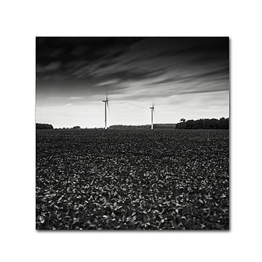 Trademark Fine Art Dave MacVicar 'Wind' 14 x 14 (ALI0867-C1414GG)