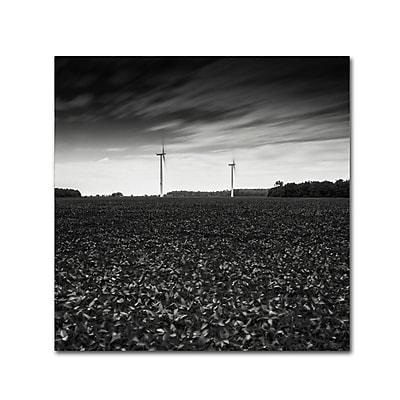 Trademark Fine Art Dave MacVicar 'Wind' 18 x 18 (ALI0867-C1818GG)