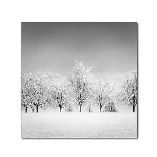 Trademark Fine Art Dave MacVicar 'Ice Storm'  24 x 24 (ALI0870-C2424GG)
