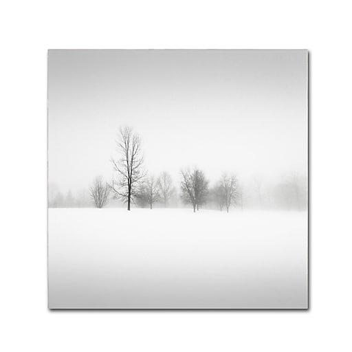 Trademark Fine Art Dave MacVicar 'Winter Fog'  35 x 35 (ALI0879-C3535GG)