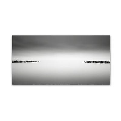Trademark Fine Art Dave MacVicar 'Symmetry' 10 x 19 (ALI0858-C1019GG)