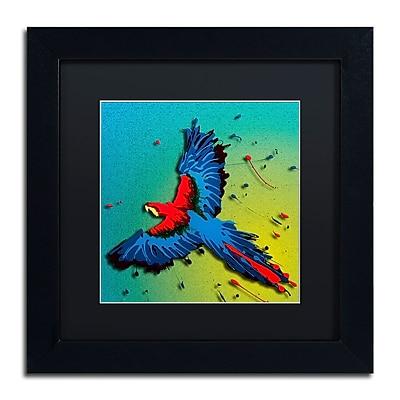 Trademark Fine Art Roderick Stevens 'The Raven 3' 11 x 11 (RS1014-B1111BMF)