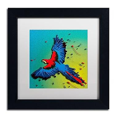Trademark Fine Art Roderick Stevens 'The Raven 3' 11 x 11 (RS1014-B1111MF)
