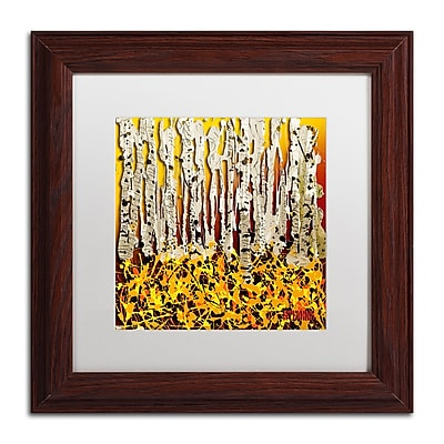 Trademark Fine Art Roderick Stevens 'Silver Aspens' 11 x 11 (RS993-W1111MF)
