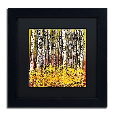 Trademark Fine Art Roderick Stevens 'Fall Aspens' 11 x 11 (RS997-B1111BMF)