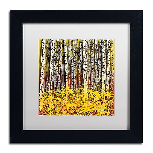 Trademark Fine Art Roderick Stevens 'Fall Aspens'  11 x 11 (RS997-B1111MF)