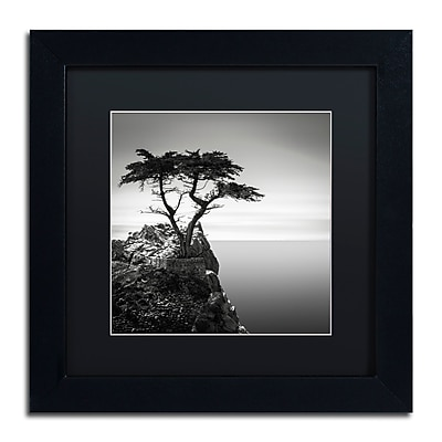Trademark Fine Art Dave MacVicar 'The Lone Cypress' 11 x 11 (886511741300)
