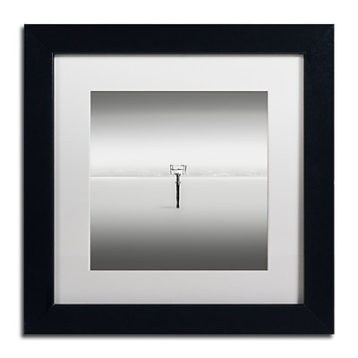 Trademark Fine Art Dave MacVicar 'Isolation'  11 x 11 (ALI0836-B1111MF)