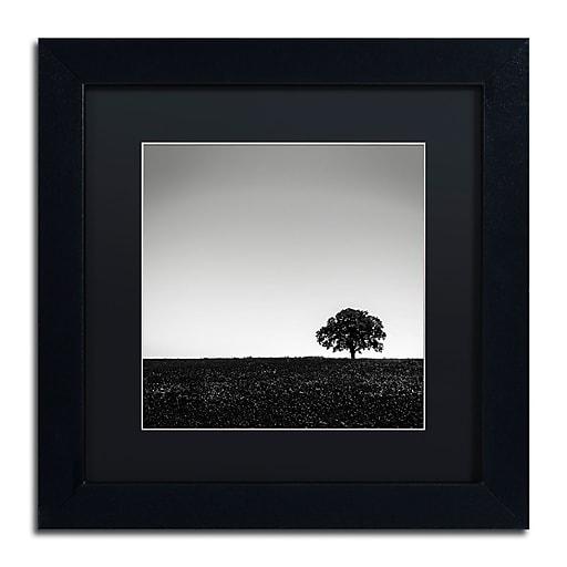 Trademark Fine Art Dave MacVicar 'One Tree Hill'  11 x 11 (886511743243)