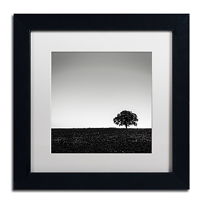 Trademark Fine Art Dave MacVicar 'One Tree Hill' 11 x 11 (ALI0843-B1111MF)