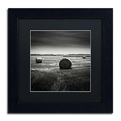 Trademark Fine Art Dave MacVicar 'Rural' 11 x 11 (886511743748)
