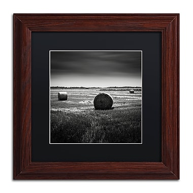 Trademark Fine Art Dave MacVicar 'Rural' 11 x 11 (886511743823)