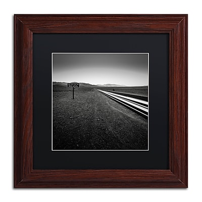 Trademark Fine Art Dave MacVicar 'Low' 11 x 11 (886511745643)