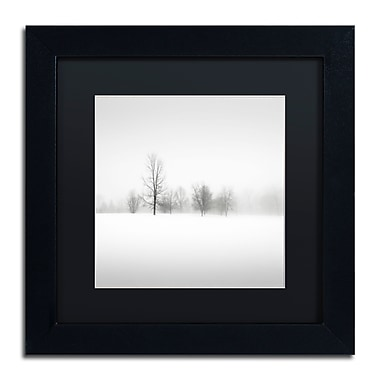 Trademark Fine Art Dave MacVicar 'Winter Fog' 11 x 11 (886511746305)